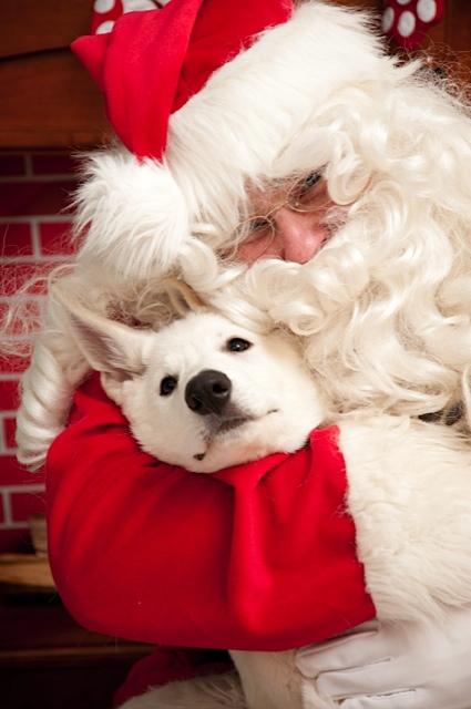 2010 Santa pictures 035